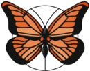 Monarch Logo Avatar