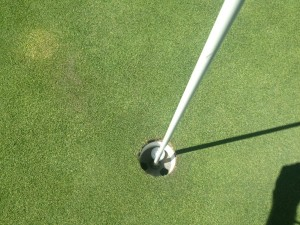Yup...that's a hole in one!
